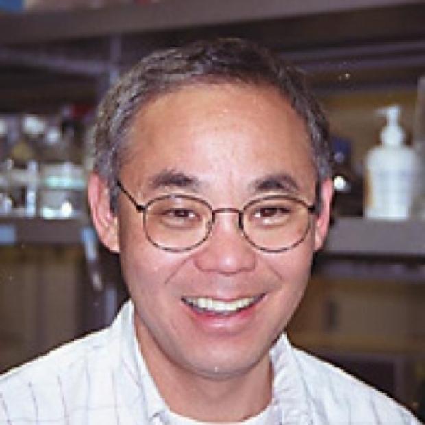 Photo of Gil Chu