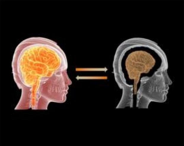 Brain Rejuvenation Project