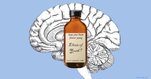 Elixir of Youth