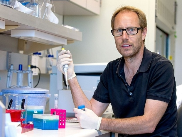 Tony Wyss-Coray in the lab.  Photo credit: Norbert von der Groeben