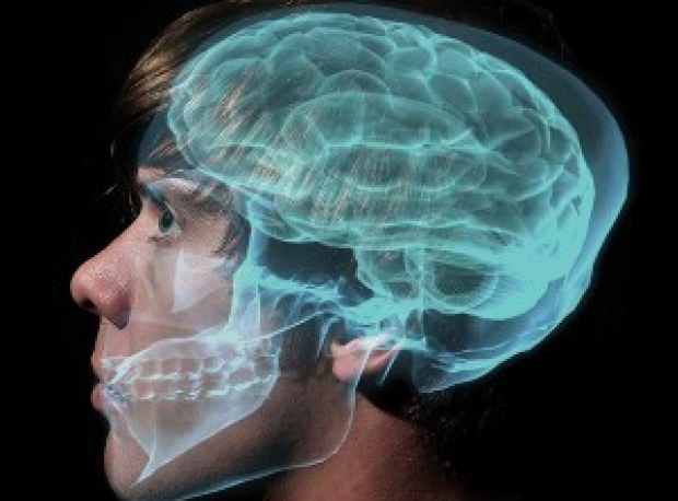 Stock photo of face with skull and brain overlay