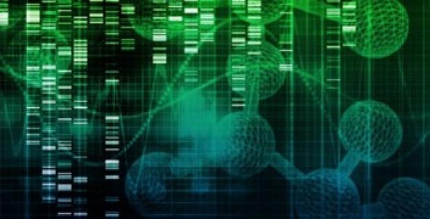 Immune Profiling of Single Cells Webinar