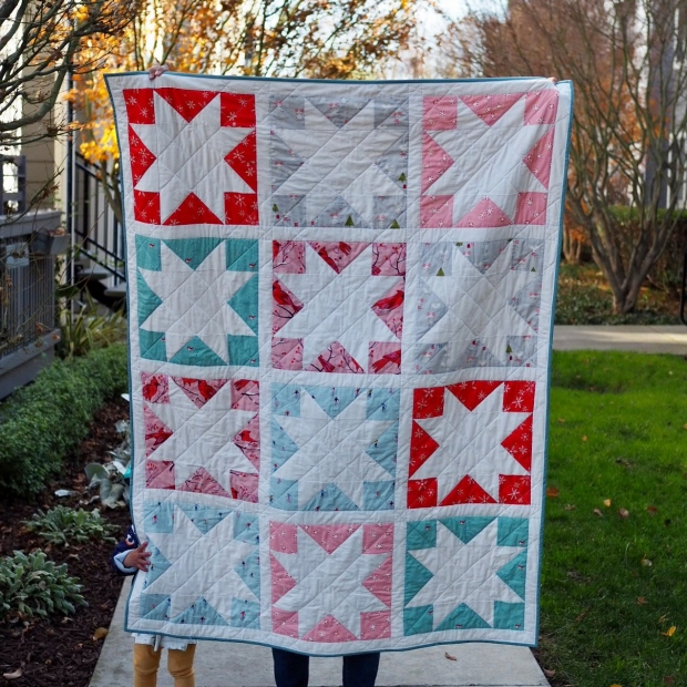 Winter Inside Out Star Quilt, Then Came June