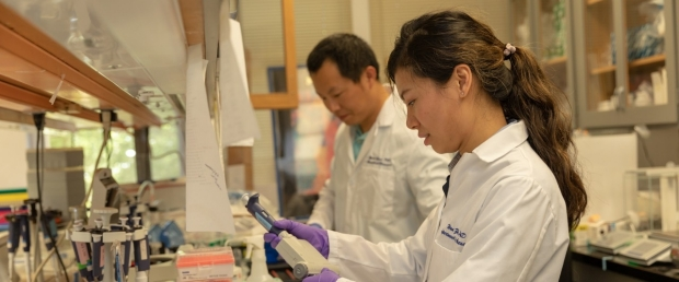 stanford anesthesia research