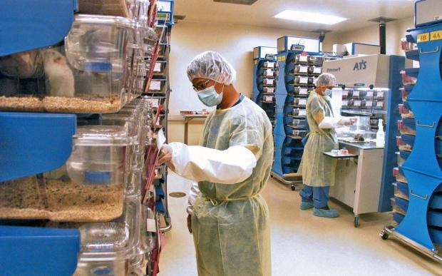 Animal care facilities with caretakers