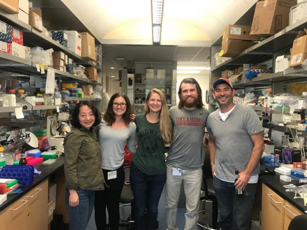 Lab Activity_Annes lab