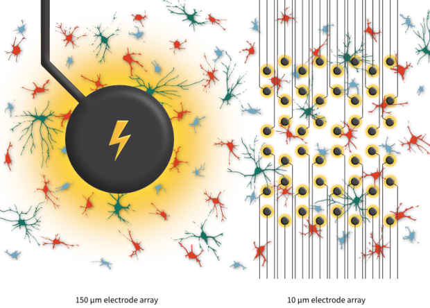 Conceptual comparison of a large electrode (150 µm diameter) and an array of small electrodes (10 µm diameter). The large electrode simultaneously stimulates many ganglion cells near it, whereas each small electrode only activates one or a few cell in its vicinity.