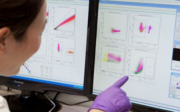 Image of researcher pointing at diagrams on a computer screen