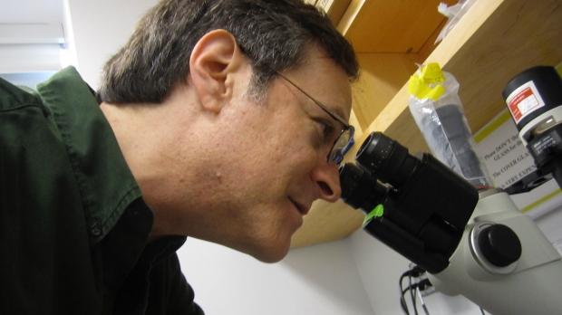 Alumni News : Matt Springer, PhD