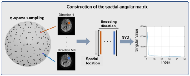 Multi-Shot DWI Reconstruction with Magnitude-Based Spatial-Angular Locally Low-Rank Regularization