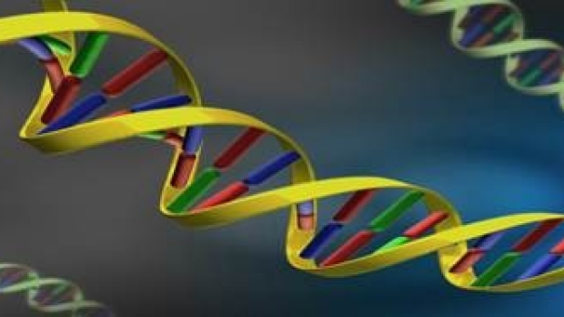 Precision Medicine: New Technology That Changes the Clinical Practice