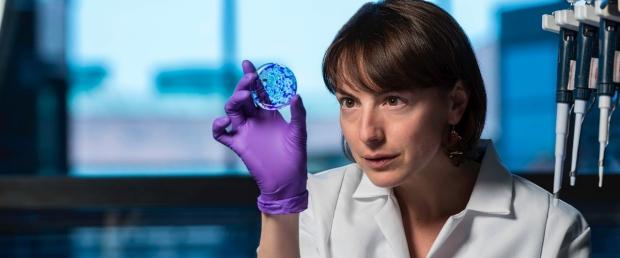 woman looking at a petri dish