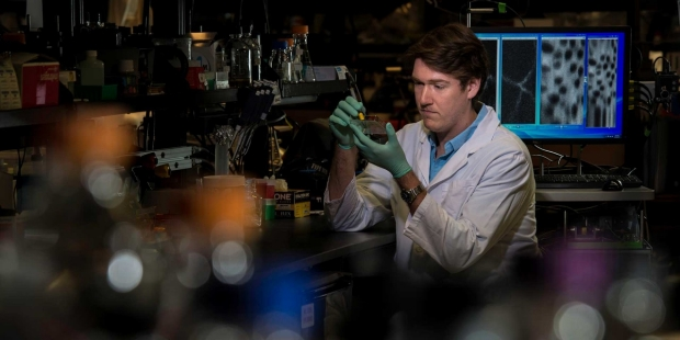 Cancer Biology Research Program