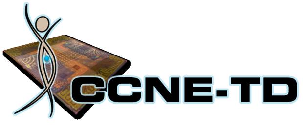 CCNE-TD logo