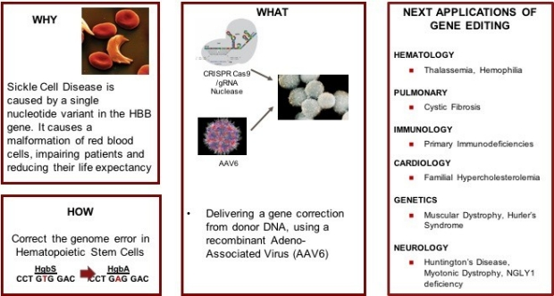 Platform 2: Gene Editing