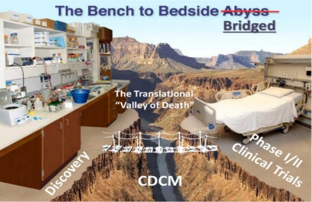 The Bench to Bedside Bridged