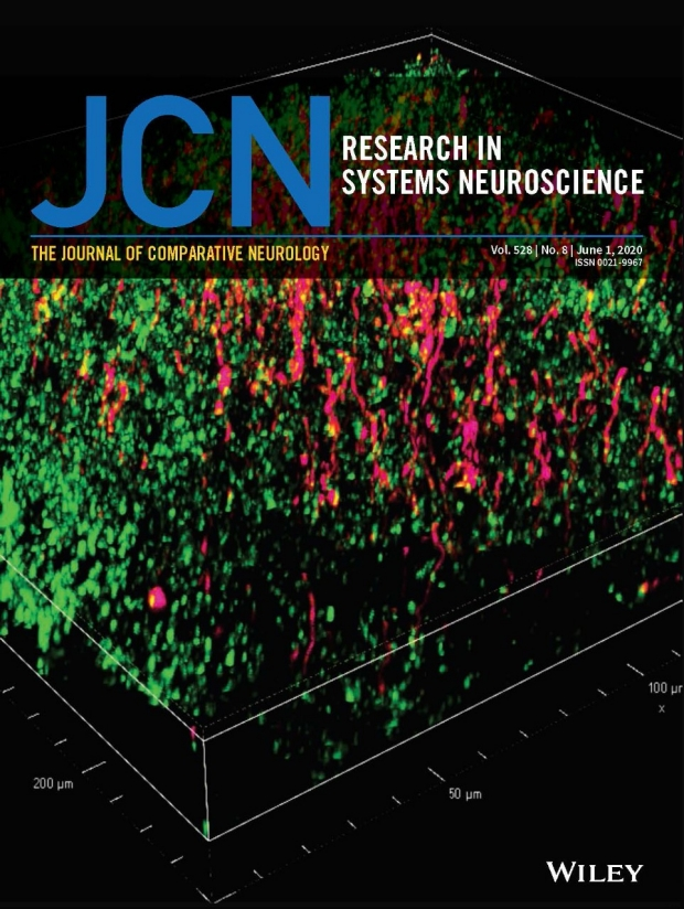 Photo of Journal of Comparative Neurology cover of June 2020