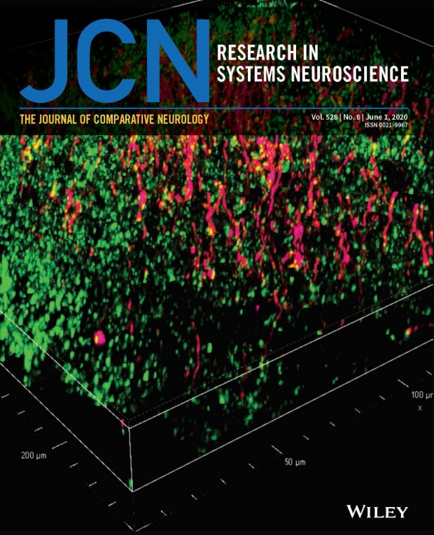 Photo of the cover of Journal of Comparative Neurology June 2020 issue