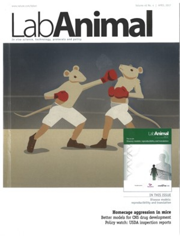 photo of animated mice boxing on the cover of the Lab Animal journal