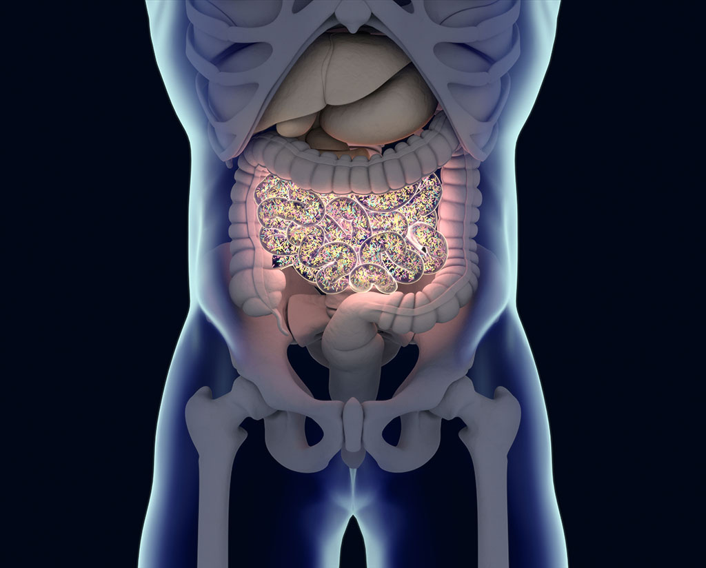 Druglike molecules produced by gut bacteria can affect gut