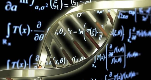 Computational biology csbs stanford