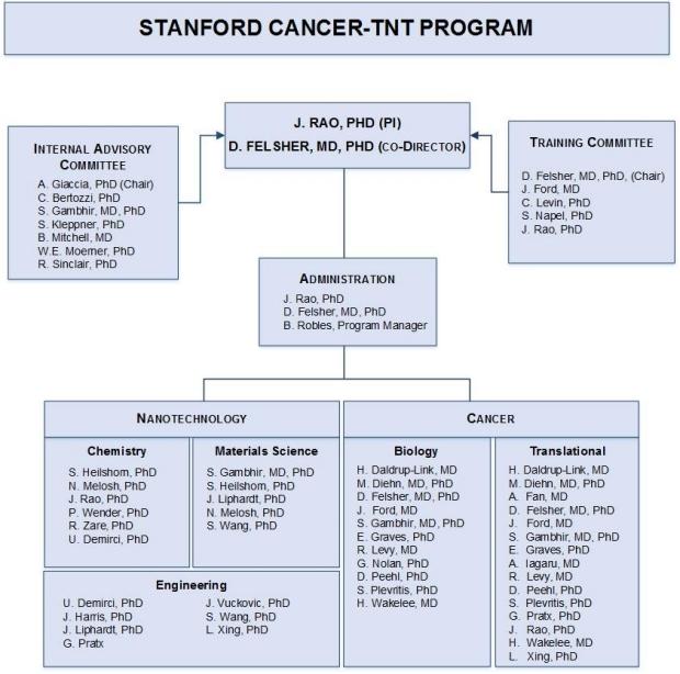 Cancer-TNT Organization