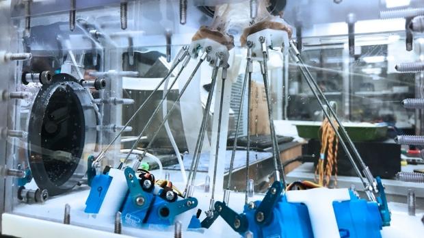 photo of biomimetic six-axis robot