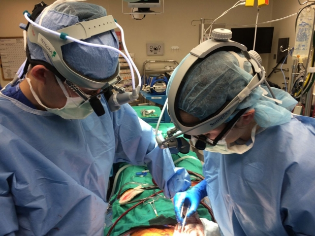 two surgeons in blue scrubs the OR