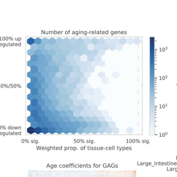 Figure A from eLife Sciences publication