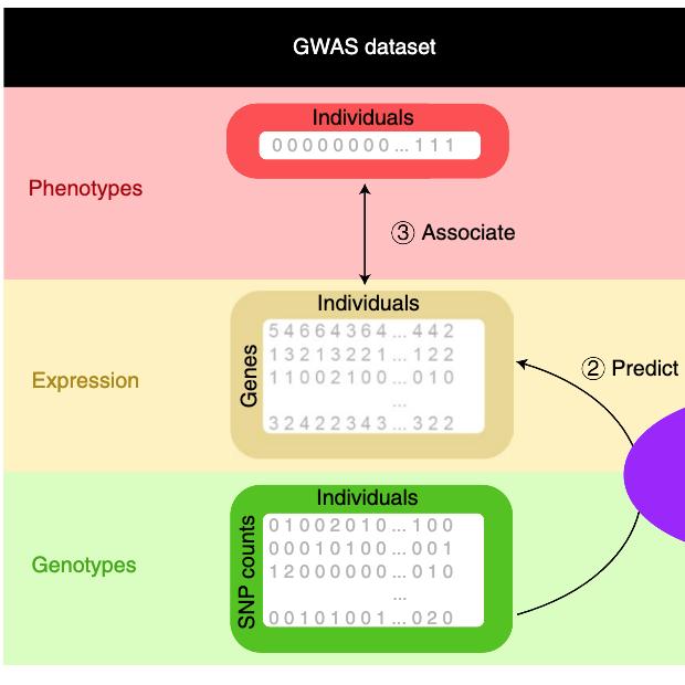 Figure from Nature Genetics study (April 2019)