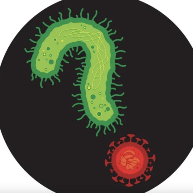 Scientific American artwork featuring COVID, and bacteria in black circle. Credit: Thomas Fuchs