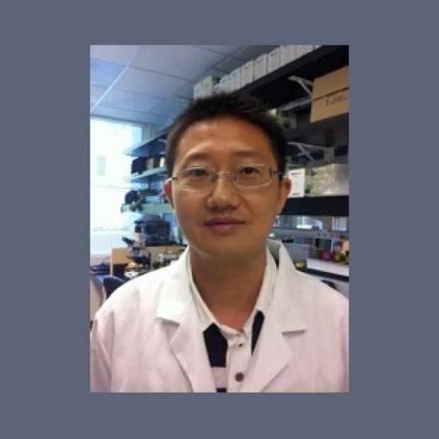 Xiaobo Liao, MD PhD