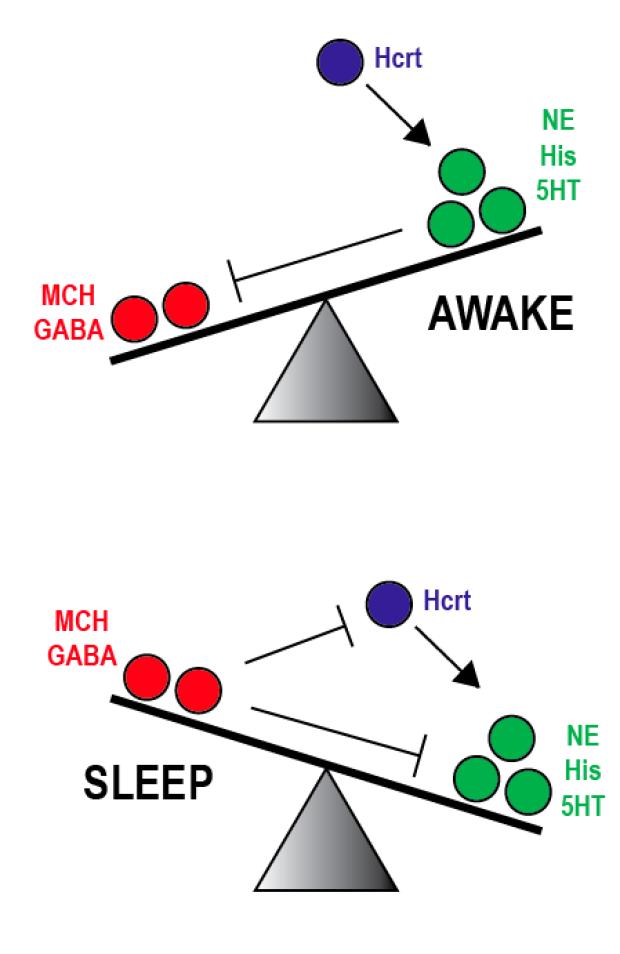 sleep_switch