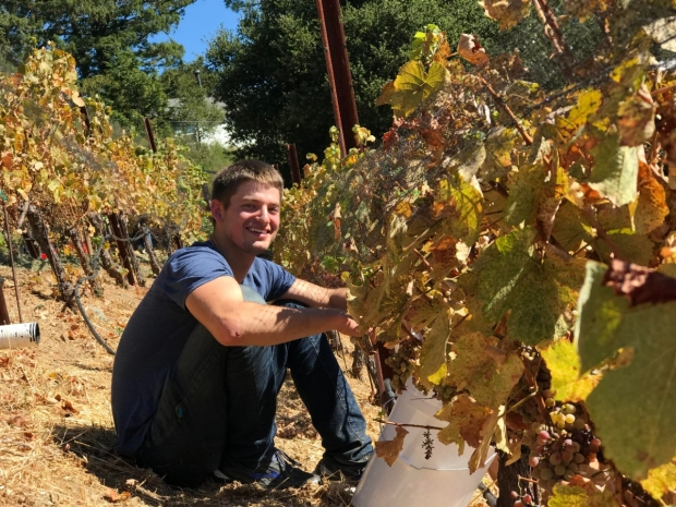 Stephen Evans Wine Vineyards Arastradero
