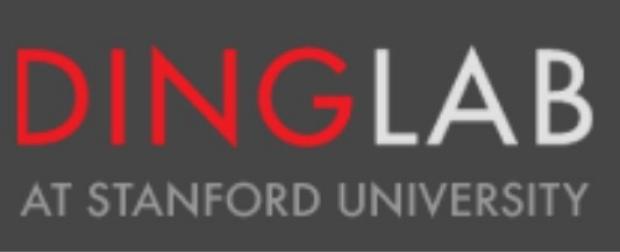 Ding Lab Logo