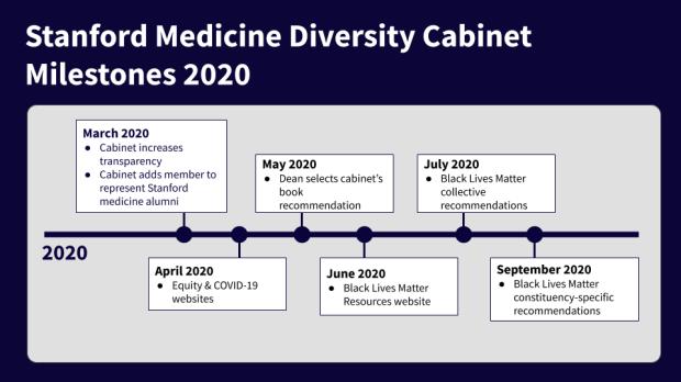 2020 Diversity Cabinet Milestones