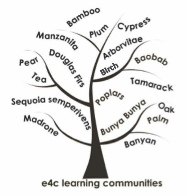 E4C Learning Communities