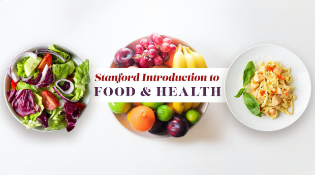Introduction to Food and Health