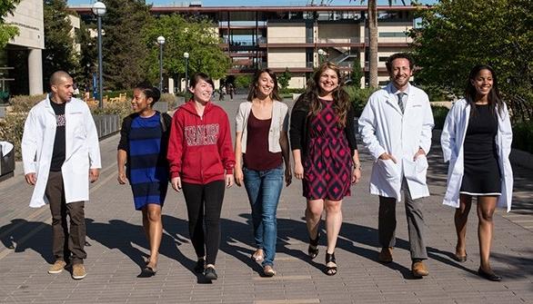 Diversity programs at Stanford Medicine