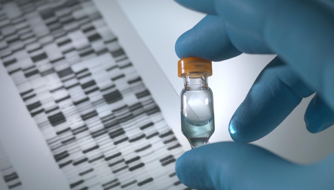 human genetics and genetic counseling