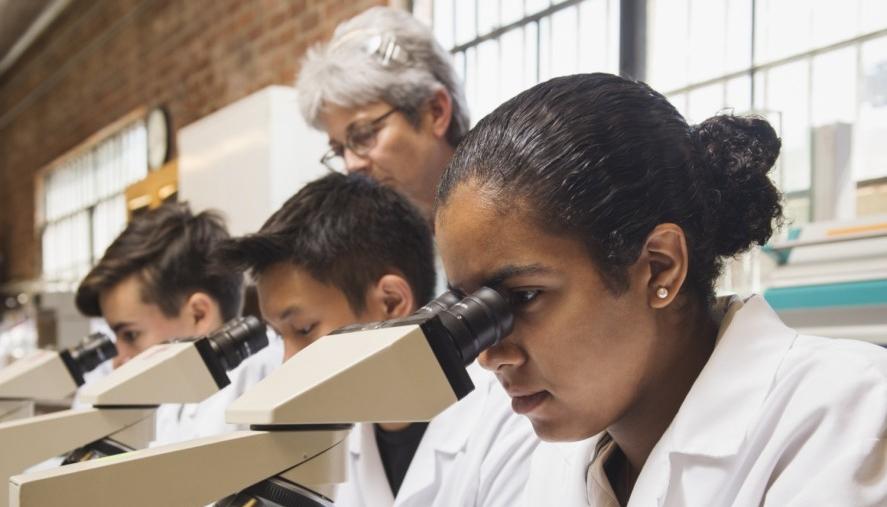 Undergradute studies - classroom learning