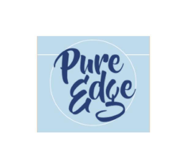 Pure Edge Inc