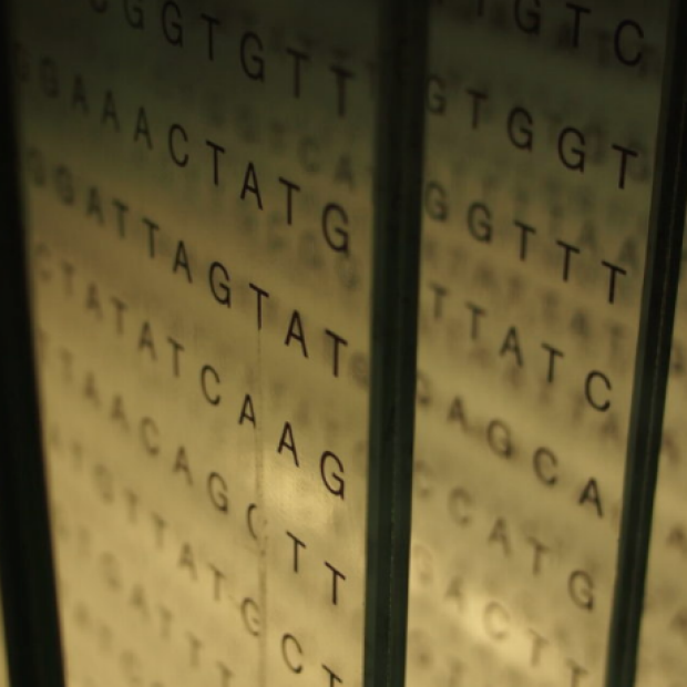 DNA Sequence image courtesy of Stanford Scope