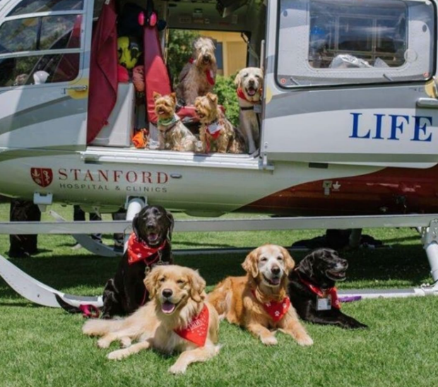 PAWS team members support SHC helicopter
