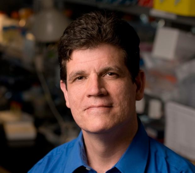 Dean Felsher, MD, PhD