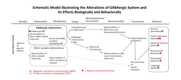 GABA-system