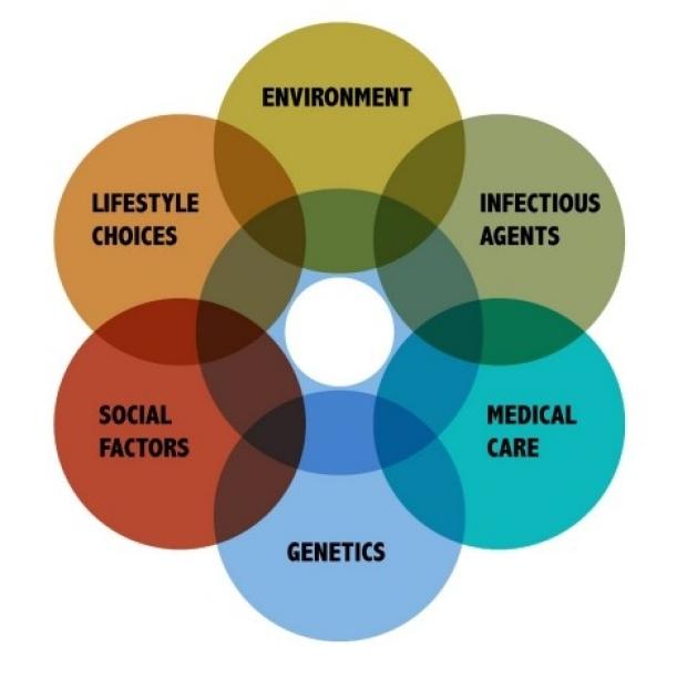 Venn diagram of factors that influence populatin health
