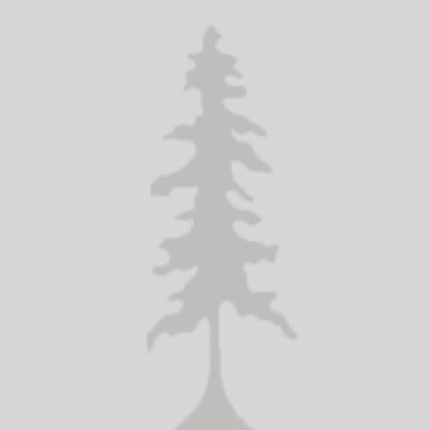 Tree_Profile