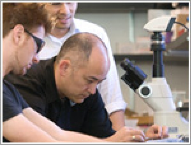 Students viewing in microscope
