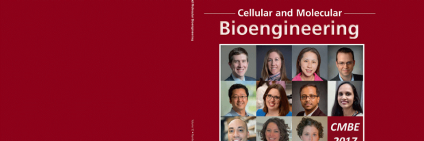 Cover of Cellular and Molecular Bioengineering featuring Ngan Huang